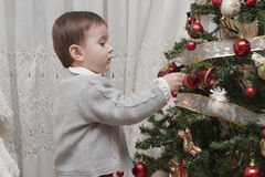 Decrating the Christmas tree. A little child impressed by his first time wdecorating the Chirstmas tree Stock Image