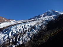 Mount Baker and Coleman Glacier in fall Stock Image