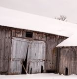 Decrepit Wooden barn covered with snow on cold New England winter day. Gap in door, boards falling Royalty Free Stock Images