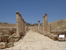 Decumanus, Jerash, Jordânia Foto de Stock Royalty Free