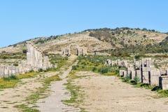 Decumanus Maximus i romare fördärvar, den forntida romerska staden av Volubilis morocco Royaltyfri Fotografi