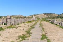 Decumanus Maximus i romare fördärvar, den forntida romerska staden av Volubilis morocco Royaltyfri Foto