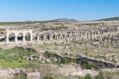 Decumanus Maximus street at Volubilis, Morocoo Stock Images