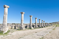 Decumanus Maximus street at Volubilis, Morocoo Royalty Free Stock Image