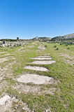 Decumanus Maximus street at Volubilis, Morocoo Royalty Free Stock Images