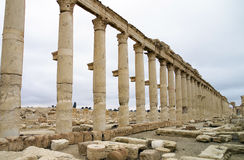 The decumanus at Palmyra, Syria Stock Photography