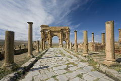 Decumanus street in Timgad Stock Images