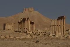 Decumenus Maximus do Palmyra Fotografia de Stock Royalty Free