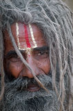 DEDICATED EYES. A close up of a monk's face, covered with curled hair, moustache and bear at the halting camp toward Gangasagar fair Royalty Free Stock Photo