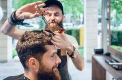 Dedicated hairstylist using scissors and comb while giving a coo Stock Photography