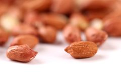Dedicated peanut against the general background Stock Image