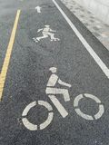 Roller skating lane on the bike path, with indicators for skaters and cyclists, yellow and white dividing lines. Dedicated separate safety lane for anyone royalty free stock photo