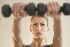 Dedicated Woman Weightlifting At Health Club Stock Photo