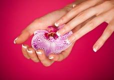 Dedo con tacto hermoso de la manicura una orquídea Fotos de archivo