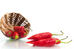 Dedo de Moca Chilly Pepper Royalty Free Stock Photos