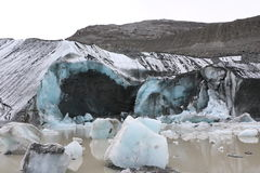 Dedo del pie del glaciar de Athabasca Foto de archivo