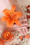 Dedos Foto de archivo libre de regalías