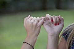 Dedos conectados promesa del meñique Imagen de archivo libre de regalías