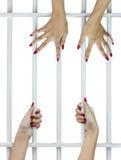 Dedos da mulher nas barras fotografia de stock