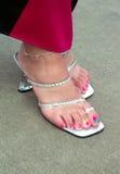 Dedos do pé da melancia Imagens de Stock Royalty Free