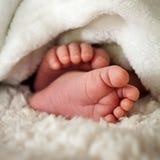 Dedos do pé do bebê Imagens de Stock Royalty Free