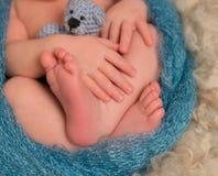 Dedos do pé e dedos de um recém-nascido, close up Foto de Stock