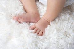Dedos do pé minúsculos Fotografia de Stock
