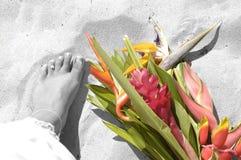 Dedos do pé na areia Imagens de Stock Royalty Free