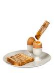 Dedos hervidos del huevo y de la tostada Imagenes de archivo