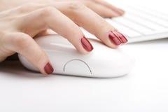 Dedos que sostienen un ratón Imagen de archivo libre de regalías