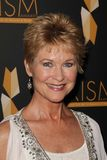 Dee Wallace Stock Image