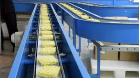 Deegwaren en noedelsfabriek stock video