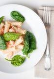 Deegwaren met zalm en spinazie stock foto