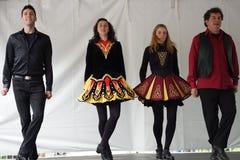 2015 Deel 3 1 van NYC DanceFest Royalty-vrije Stock Foto