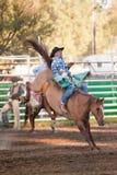 Deelnemer bij de rodeo Willits Stock Afbeeldingen