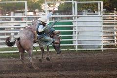 Deelnemer bij de rodeo Willits Royalty-vrije Stock Afbeelding