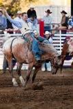 Deelnemer bij de rodeo Willits Royalty-vrije Stock Fotografie