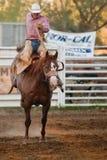 Deelnemer bij de rodeo Willits Stock Foto