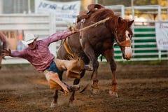 Deelnemer bij de rodeo Willits Royalty-vrije Stock Foto