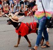 Deelnemers in Edmonton Pride Parade Stock Fotografie