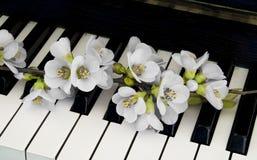 Deelnemingskaart - bloem op piano royalty-vrije stock afbeelding