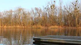 Deelpier in meer of rivier stock footage