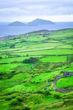 Deemish and Scariff Islands. Lush coastal landscape with island views, Derrynane, Ring of Kerry, Ireland Royalty Free Stock Photography