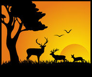 Deen In Forest-silhouet stock illustratie