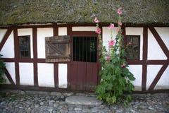 Deense boerderij Royalty-vrije Stock Afbeeldingen