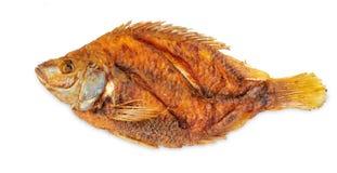 Deeo gebraden Tilapia gebraden vissen die op witte achtergrond worden geïsoleerd stock afbeelding