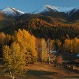 Deep autumn. In Xinjiang,China. Snow mountain and villages Royalty Free Stock Image