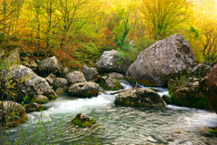Deep autumn on the river Royalty Free Stock Images