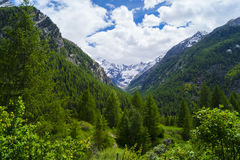 Deep blue Alpes. Cogne - village in Gran Paradiso Park Royalty Free Stock Photos