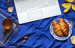 Deep blue autumn concept flat lay with a laptop, fall leaves and a snack. Royalty Free Stock Photo